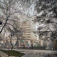 туман в городе :: юрий иванов