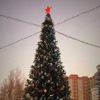 С Рождеством ! :: Мила Бовкун