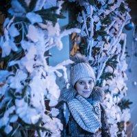 Новогодняя принцесса :: Игорь Герман