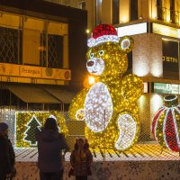 Teddy bear :: Олег Манаенков