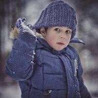 Зимние забавы :: Михаил Гужов