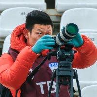 коллега из Китая :: олег кирюшкин