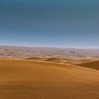Такие разные пески :: Gennadiy Karasev