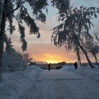 На закате :: Наталья Тимофеева