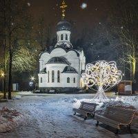 Рождественская сказка. :: Марина Ножко