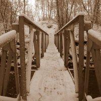 Tiltas per Lėvenį / Bridge through the river Lėvuo :: silvestras gaiziunas