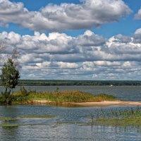Устье реки Чингис :: Дмитрий Конев