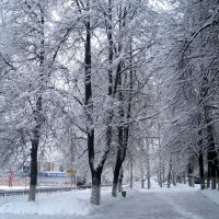 Cнежной зимой :: Елена Семигина