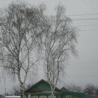 Муромская деревня :: Надежда