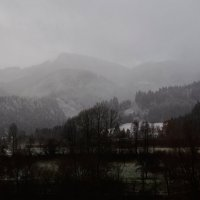 пасмурное утро :: Andrad59 -----