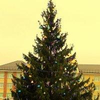 Рождество в Вятском Пасаде :: Андрей Сотников