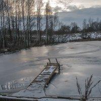 Зимний пруд :: Тамара Цилиакус