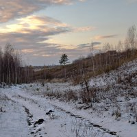Снег выпал... :: Тамара Цилиакус