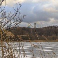 Замерзший пруд :: Сергей Цветков