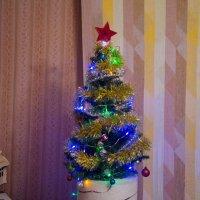 И елочка стоит ... :: Аленка Алимова