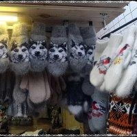 Собачьи рукавички :: Вера