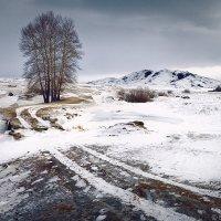 Январь. Восточный Казахстан :: Sergey Baturin