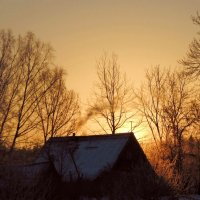 Морозное утро. :: Нина Бурченкова.