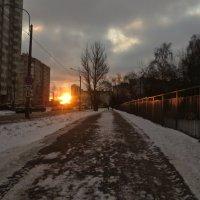 зимний рассвет в городе :: Елена