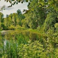 Монастырский пруд... :: Sergey Gordoff