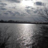В зимний день на реке :: Галина