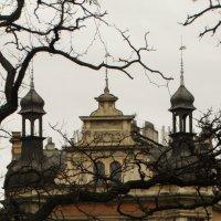Прага :: natalya platonova