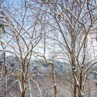 Зима, зима ... :: Kirill
