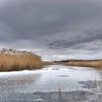 Зима предьявила свои права . :: Va-Dim ...