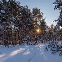 Зимний пейзаж заката :: Александр Синдерёв