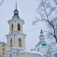 Царево-Константиновская Знаменская церковь. :: Андрей Синицын