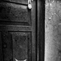 Не пускают домой котяру... :: Ирина Токарева