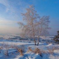 Виды природы. Зимняя долина :: Анатолий Иргл