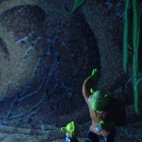 Шрек в джунглях 1 :: Юрий Гайворонский