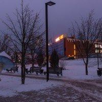 Зимнее утро в парке. :: Виктор Евстратов