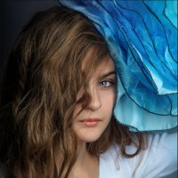 Голубая роза :: Елена Ерошевич