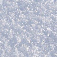 Снежинки :: Инна Сперанская