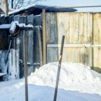 Две лопаты во дворе... :: Михаил Полыгалов
