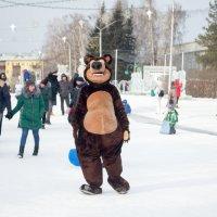Вот такие медведи ходят в Сибири :: Сергей Черепанов
