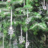 Рождественская елка в Цюрихе :: Mariya laimite