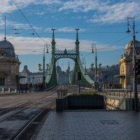 Мост через Дунай. :: Юрий Скрипченков