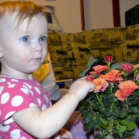 Дарите Девушкам цветы! :: Aleks Ben Israel