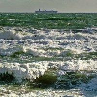 сильный ветер... :: Александр Корчемный