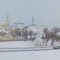 Сергиев Посад. Лавра. Снегопад :: Александр Шмалёв