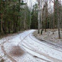 Тёплая зима :: Милешкин Владимир Алексеевич