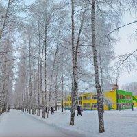 детский сад :: Михаил Николаев