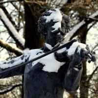 Маэстро зимой  3 :: Сергей
