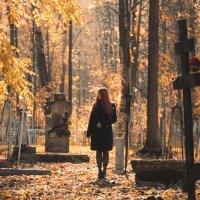 Осень в полном покое :: Татьяна Шторм