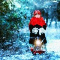 зимняя сказка :: Елена Акимова