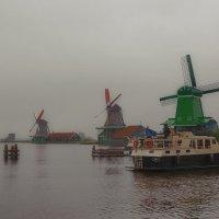 Пасмурным утром в Нидерландах... :: Александр Вивчарик