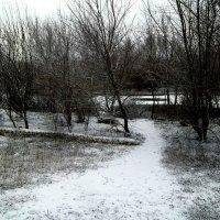 Зима :: Татьяна Королёва